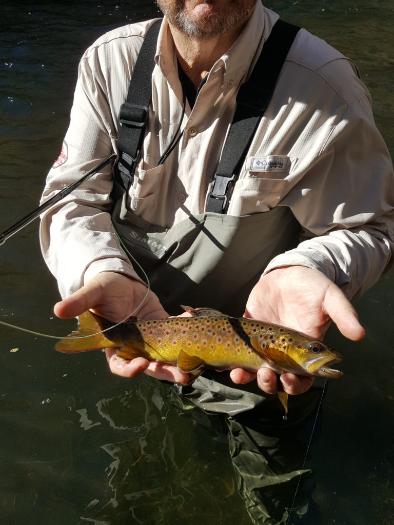 Bishop fly guide, eastern Sierra Fly fishing, Mammoth fly guide