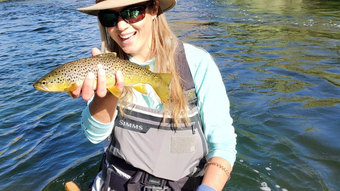 on the lower owens river near bishop california a lady in waders holds a wild brown trout above the river